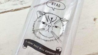 100均セリアのウォーターボトルぶさかわいい猫柄
