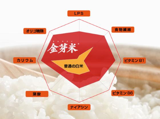 金芽米に含まれている栄養と白米比較